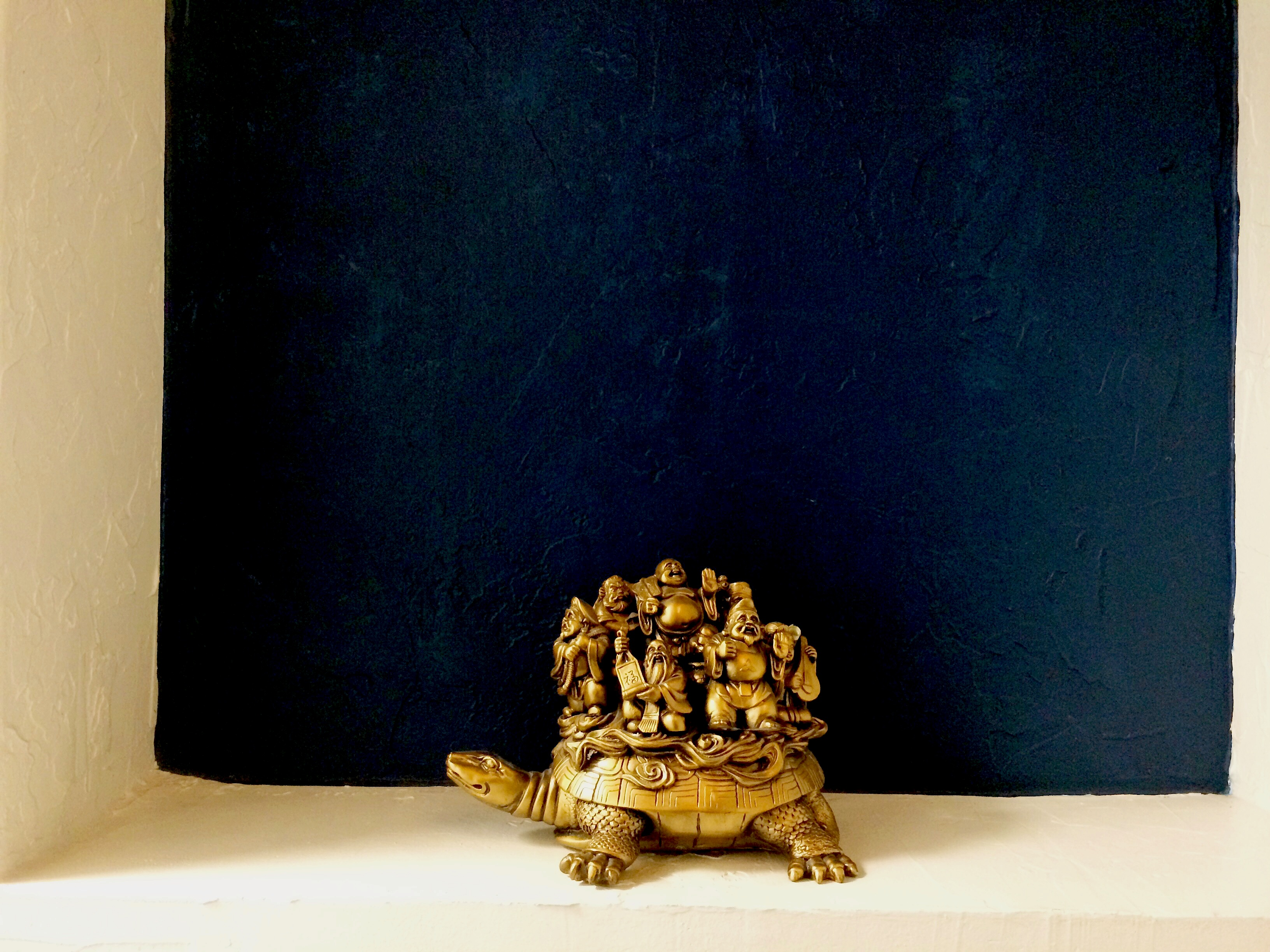 AOMA Turtle