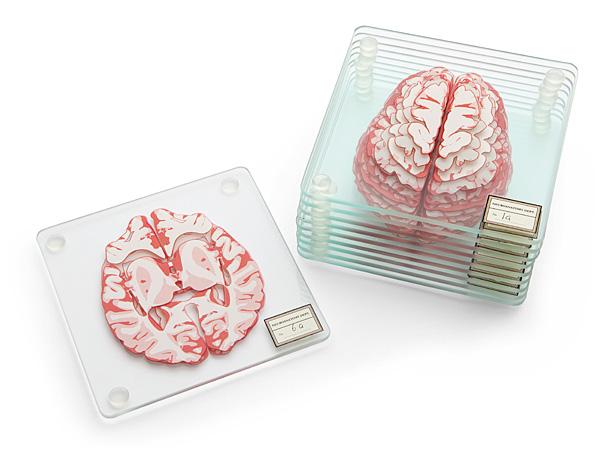 huir_brain_specimen_coasters