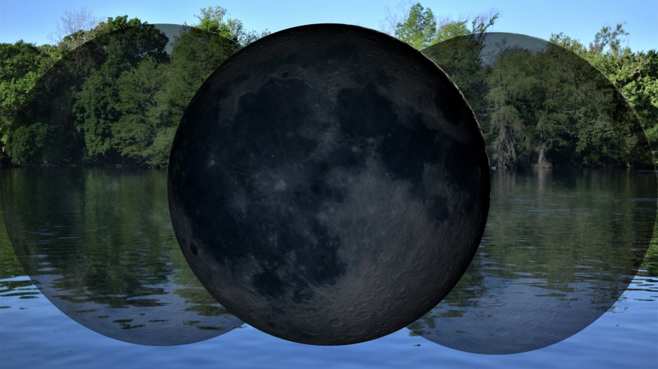 New Moon In Aries: The BeautifulStruggle